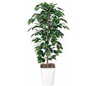 光触媒 人工観葉植物 フィカスベンジャミン1.2