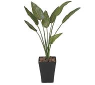 光触媒 人工観葉植物 ストレチア1.1
