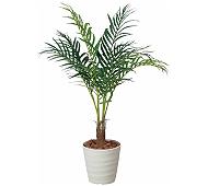 光触媒 人工観葉植物 アレカパーム1.15