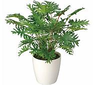 光触媒 人工観葉植物 スプリットM