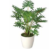 光触媒 人工観葉植物 スプリット