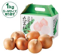 兵庫県淡路島産たまねぎ1kg