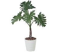 光触媒 人工観葉植物 セローム1.0