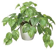 光触媒 人工観葉植物 フレッシュポトスM