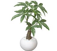 光触媒 人工観葉植物 パキラポット