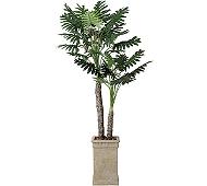 光触媒 人工観葉植物 セローム2.0
