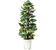 光触媒 人工観葉植物 ポトス1.35