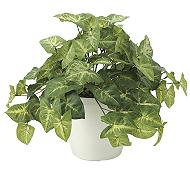 光触媒 人工観葉植物 フレッシュカラージューム
