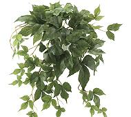 光触媒 人工観葉植物 壁掛メイプルアイビー