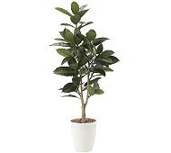 光触媒 人工観葉植物 ゴムの木1.25