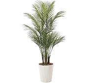 光触媒 人工観葉植物 アレカパーム1.5