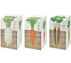 おうちで根菜栽培セット