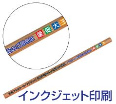 トンボ鉛筆 木物語 1面フルカラー印刷込み