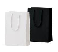 手提げ紙袋 シャイニーバッグS