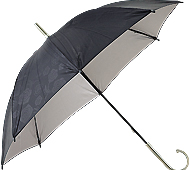 レイローズ・晴雨兼用長傘