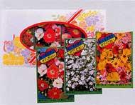 ラブリーパック3M(花の種3種)