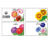 横型イラスト花の種子