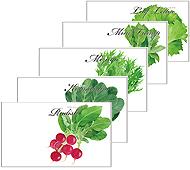 横型イラスト野菜の種子